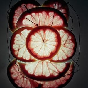 Художник-ученый генерирует электричество из различных предметов